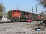 CN 8873