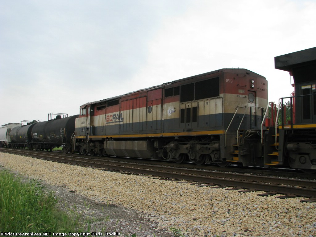 BCOL 4619