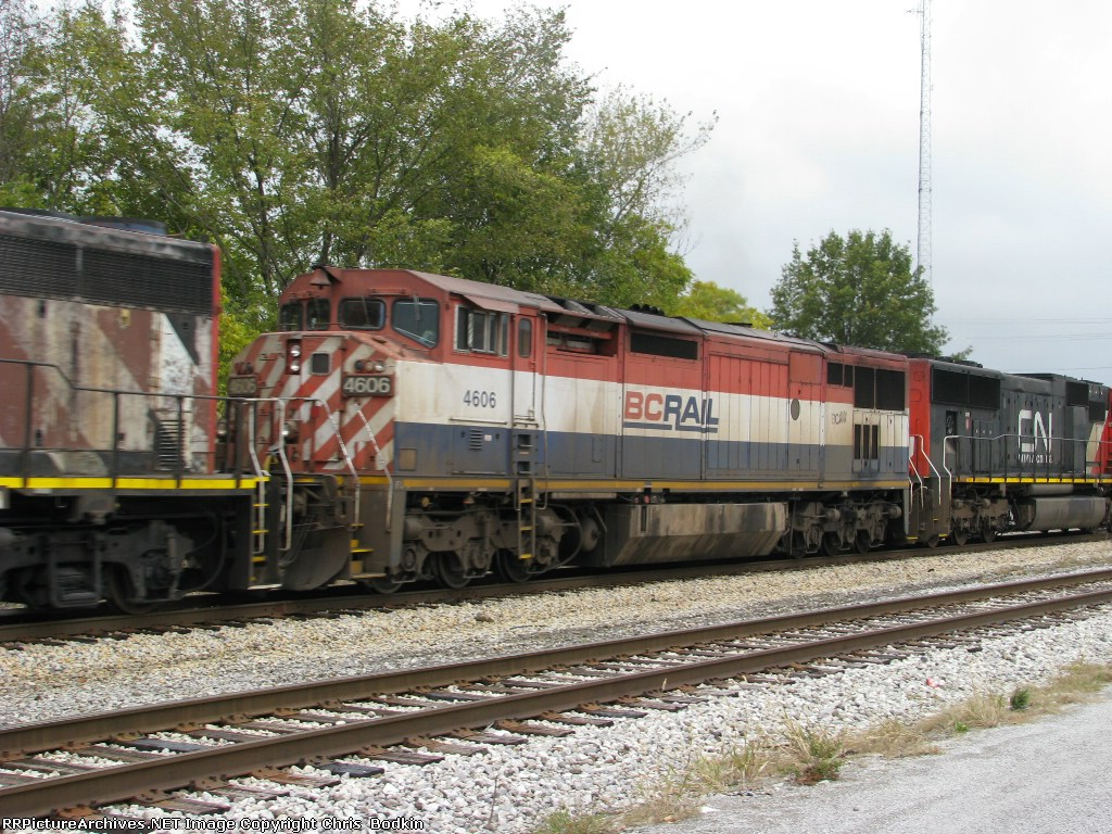 BCOL 4606
