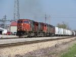 CN 5638