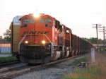 BNSF 9382 & 9898 bring D801-17 east with eastern empties
