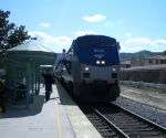 Shorty Coast Starlight