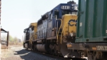 CSX 8443 trailing on a trash train