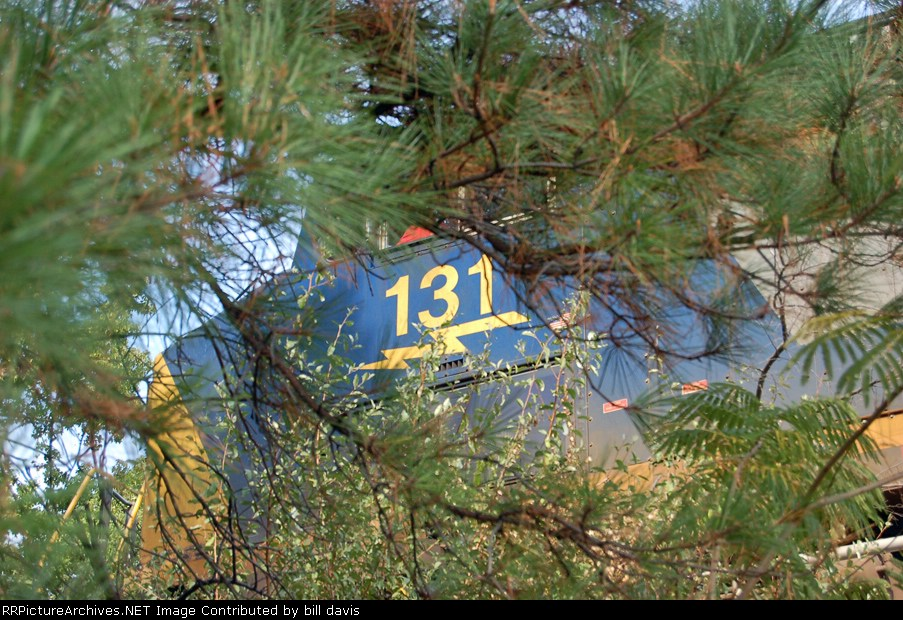 CSX in the trees