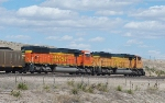 BNSF 9934 and 8976
