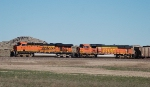 BNSF 6138 and 8981