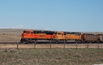 BNSF 9194 and 8842