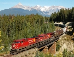 CP 8512  Grain Train