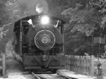 Flagg Coal 75