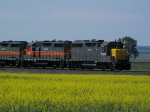 Two of the Five ex-SP GP35s Working the BNSF/CP/DMVW Interchange
