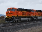 BNSF 7293 and BNSF 7295 Lead the Z PTL-CHI into the BNSF Hauser Yd.