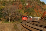 CN in fall colours