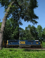 CSX Q194 passing the railfan swing