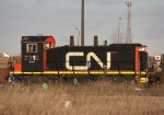 CN 7316
