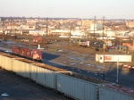 Lots of colors at Oak Island Yard