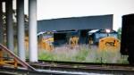 CSX 8764 leads a manifest train