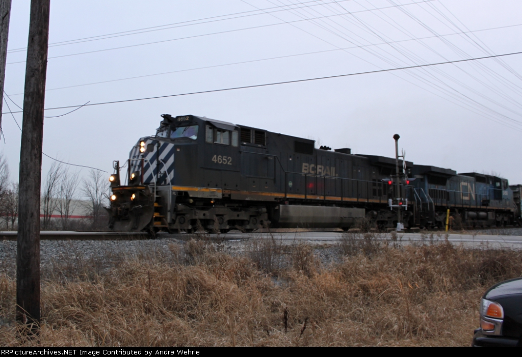 BCOL 4652 leads an IC bluebonnet on NB M335