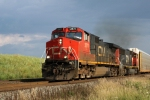 CN 2571 leads a northbound approaching Weyer Rd.