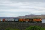 BNSF 4959 West