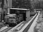 G107 loading at Pilgrims Pride in B&W