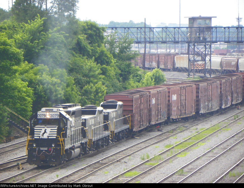 Norfolk Southern 3079, 925, and 931