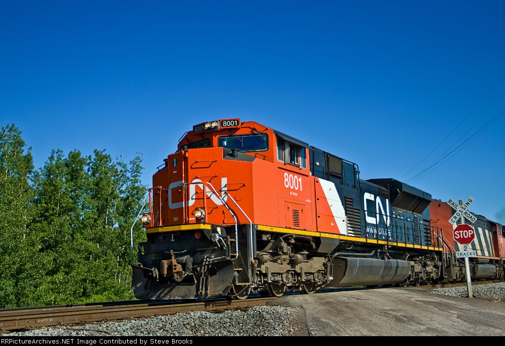 CN 8001
