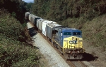 CSX C44-9W #9005, leading a southbound grain train as sole power,