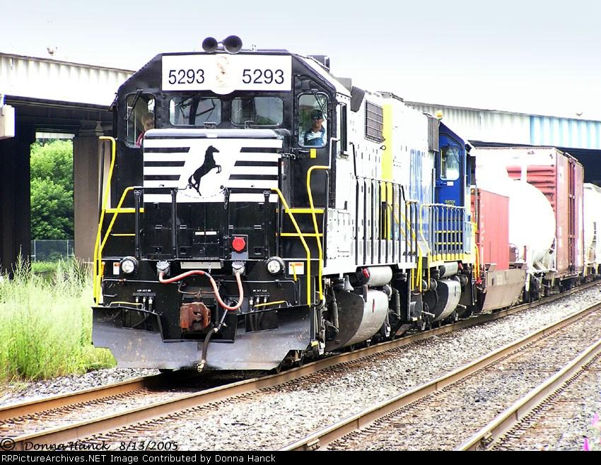 NS 5293