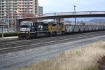 NS 501 with 80MAC and UP SD70ACe