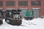 NS 9595