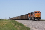 BNSF 8989 East