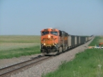 BNSF Coal Loads south on the Boise City Sub in Oklahoma.