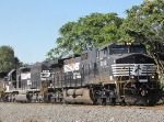 NS 9133 & 6116 on the 44T