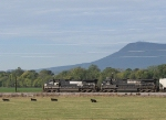 NS 9608 & 8861 leading the 44V grain train