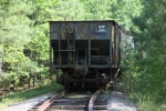 DCLR 2002 has a string of passenger cars behind it tucked away in the woods