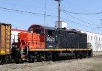 CLNA 7003