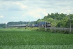 A Westbound stack train comes through across the corn
