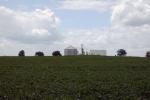 Bluegrass Farms spur ROW?