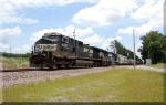 NS 9387 & NS 6564