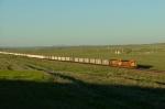 BNSF 5898
