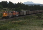 BNSF 8980