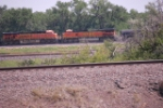 BNSF 5501 South Bound Freight