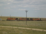 BNSF 4631, 5451, 4647