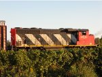 CN 9433 pulling 30+ autoracks, few boxes, centerbeams, tanks, covered hoppers and a locally rare woodchip car