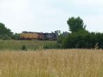 Coal train in the bushes