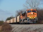 BNSF 5795 (NS #736)