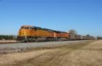 BNSF 8894 (NS #738)