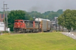 CN 2441 on NS 184