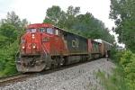CN 2441 on NS 184