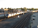 AMTK 116 leads 2 more P42's as the Capitol Limited pulls in for its' station stop